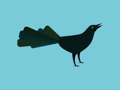 Grackle jmc100days texas bird shapes shading illustration illustrator atx austin grackle