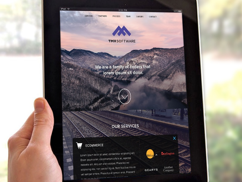 TMX One Page Website website web design ux user experience