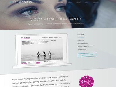 FreshSparks Work Detail Page web design responsive web design rwd website