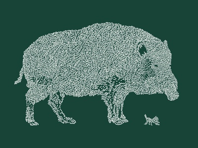 Boar / Inoshishi grasshopper green forest pig boar art line illustration