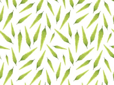 Thin Leaves