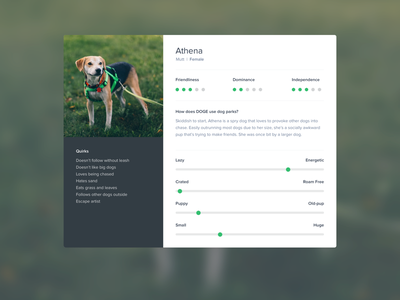 Canine Persona clean pup dots points scale rating proxima nova research user persona dog