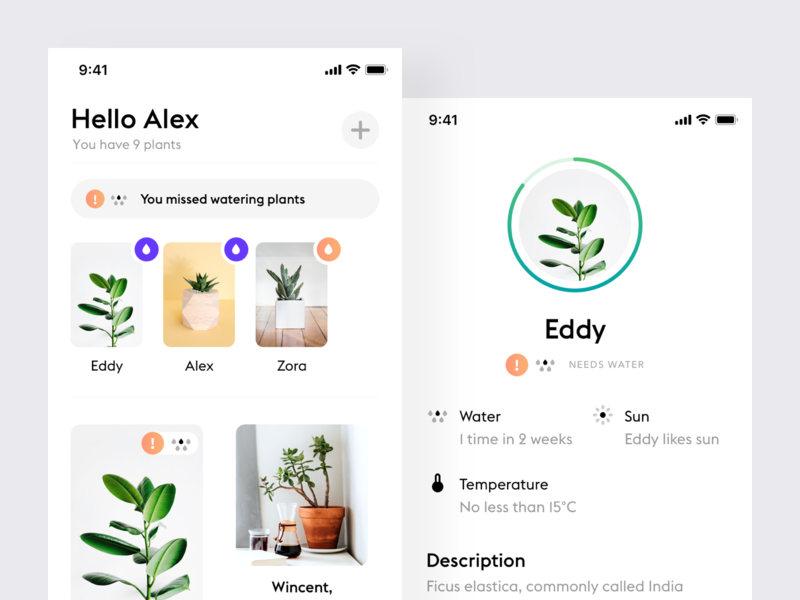 Plants mobile flat app ios iphone product design design ui ux minimalistic interface minimal ios simple app white ui clean