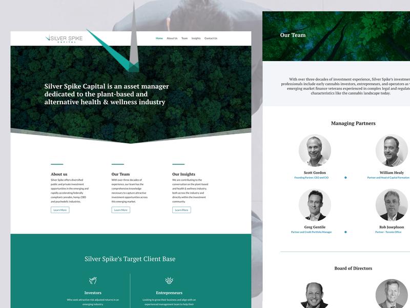 Asset Management website investment finance wordpress design cannabis website wordpress fintech