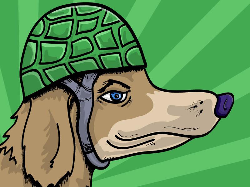 Dog Wearing Helmet illustration helmet dog