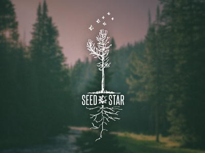 Seed Star roots tree woodcut identity logo