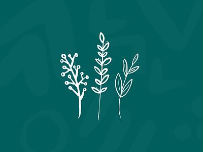 Floral Illustration illustration digital illustration design illustration art illustrations