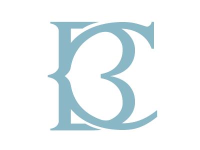 Bearcourage 02 logo typography