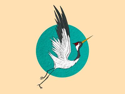 Crane in flight bird crane illustration art illustration digital painting digital illustration design