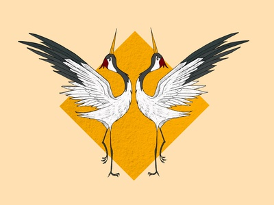 Cranes meeting bird japanese cranes illustration art illustration digital painting digital illustration design