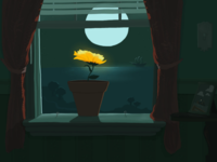Moonlight Window Flower