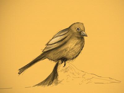 World Sparrow day digital art save sparrow save wings photoshop sketch quick art bird sparrow