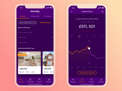 Property Search App Concept