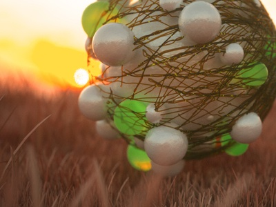 Sunset Grass 3d
