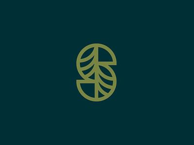 Sequoia Orthodontics Logomark logo designer logo identity brand branding brand identity logo design logo
