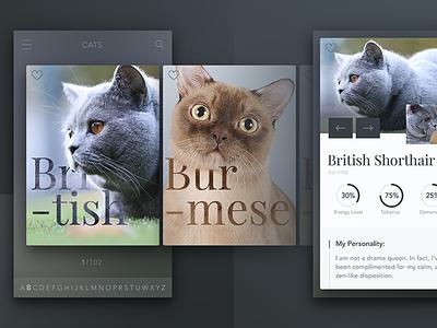 Cats iOS app image arrow info chart favourite slider mobile ios app