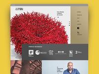 Website Product Designer