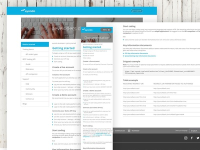 developers documentation site devs fintech branding ux web ui