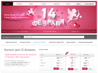 Website hosting provider