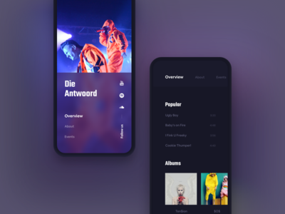 Die Antwoord Mobile mamulashvili tato web typography music die antwoord ui ux product design app