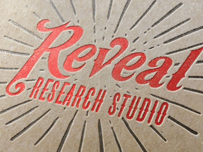 Reveal Research Branding