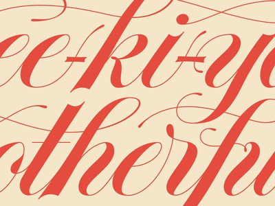 Yipee-ki-yay! spencerian hand lettering lettering typography type