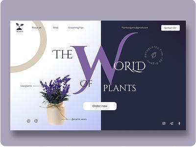 The World of Plants flower nature flowers web plants ux illustration design ui
