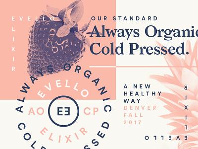 Juicing packaging badge illustration typography pattern grids system lines logo branding