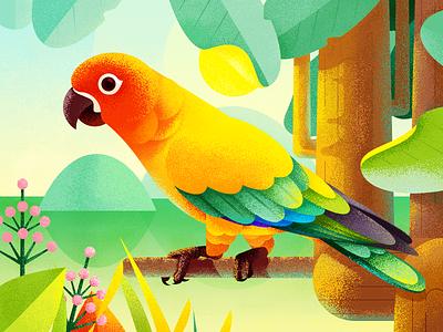The Parrot Illustration design ios11 forest tree lake water illustration sunshine bird parrot