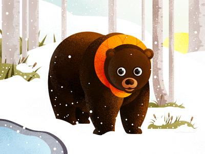 Forest illustration series -Bear