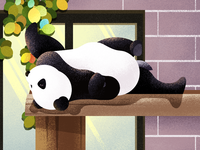A cute panda  illustration