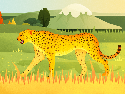 A Leopard On The Grassland ios11 iphone x grassland leopard