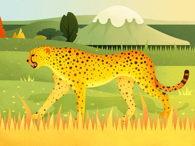 A Leopard On The Grassland