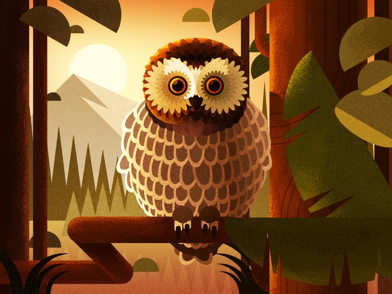 Owl in the  forest sunrise sun illustration bird iphone x ios11 forest owl