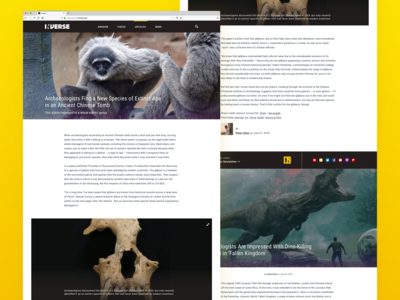 Inverse Media innovation news feed media articles landing page ui design ux interface