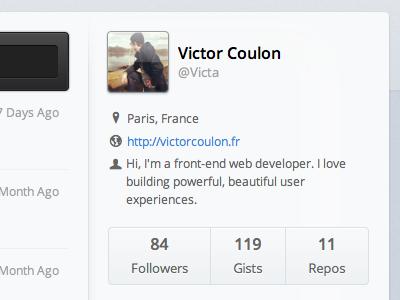 Profile WIP profile user infos css3