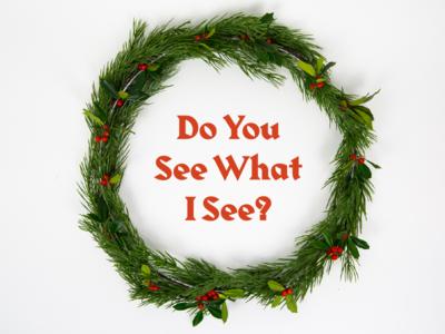 Do You See What I See II
