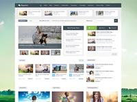 Magazine Responsive Multipurpose Wordpress Theme