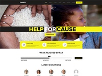 Charity / Fundraising WordPress Theme