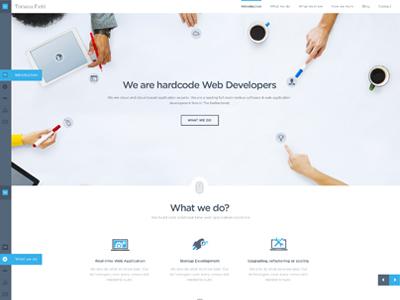 Tomasa Field Website Design web design parallax design clean modern one page agency design tomasa field design