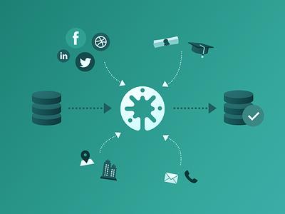 Data enrichment blog post illustration profile candidate process flow process arrows social enrichment data illustration software marketing recruiting crm recruitment beamery