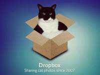 It's a Cat in a Box