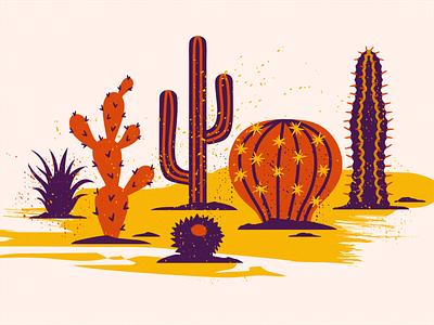 Cactus Scene cactus plant wild west wildlife wild nature western west