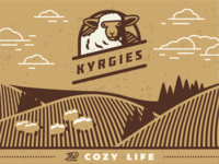 Shoe Box Design for Kyrgies