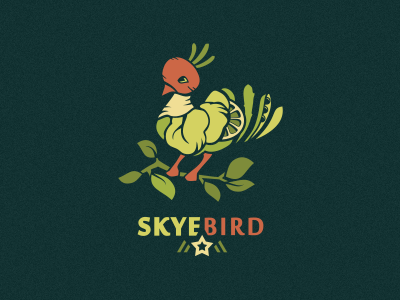 Skyebird  food logo design organic drink adline branding logo illustration bird fruit vegetable vegetables healthy juice salad green local orange lemon peas radish