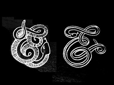 Dribbble snake2