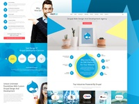 Drupal Design & Development Services Inner Page