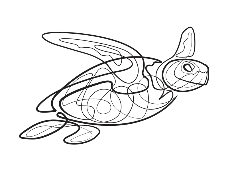 Turtle Line Drawing Tattoo : Single line turtle by jonathan russo dribbble