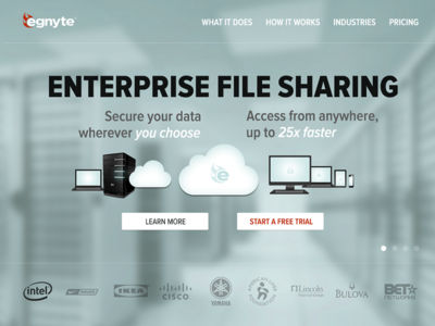 Egnyte Homepage