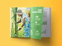 ANDE Annual Report
